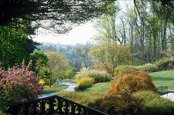 biltmore_shrub_garden_600x