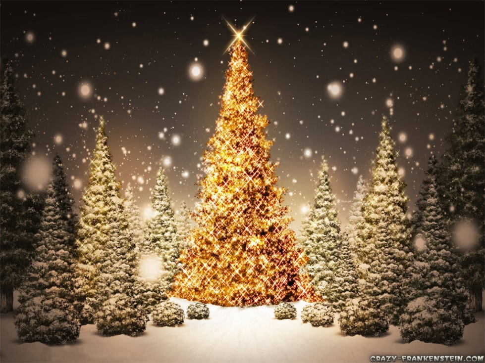 christmas-tree-sparkling-wallpapers-1024x768